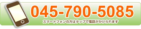 電話番号0457905085
