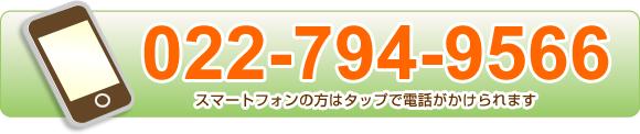 電話番号0227949566